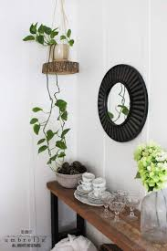 easy diy hanging planter using a wood slice and the summery