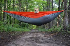 Winner Outfitters Double Camping Hammock by Winner Outfitters Home Facebook