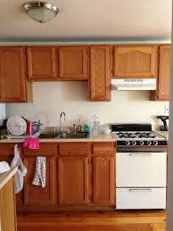 Painting Kitchen Cabinets Brown by Cabinet Best Painted Kitchen Cabinets For Home Pictures Of