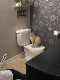 what is a powder room remodelaholic powder puff powder room remodel guest