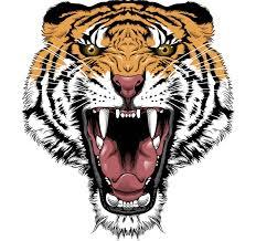 snake tiger tattoo tiger tattoo images u0026 designs