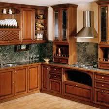 kitchen cabinets photos ideas fascinating kitchen cabinets ideas pics inspiration tikspor