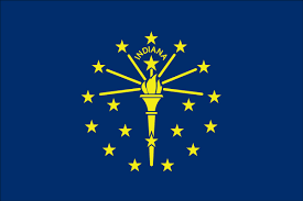 Michigans Flag 4