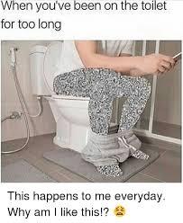 Meme Toilet - 25 best memes about on the toilet on the toilet memes