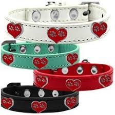 mirage pet products mardi collars tagged collars yourstarpet