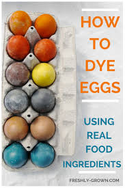 25 best how to dye eggs ideas on pinterest how to color eggs