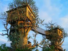how to design a unique and special tree house interior design