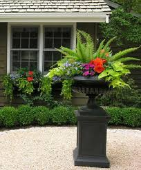 Patio Potato Planters Shade Containers So Easy To Do Goldilocks For The Vine Begonia