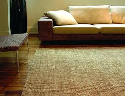Pottery Barn Chenille Rug Fiber Runner Best Rugs Pottery Barn Jute Rug Reviews