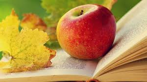 books tag wallpapers books apples leaves nature image for pc