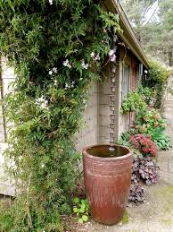 Decorative Water Tanks Best 25 Rain Barrels Ideas On Pinterest Water Barrel Rain