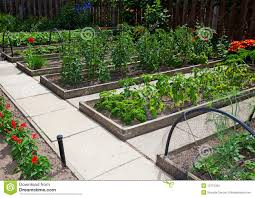 kitchen garden designs raised vegetable garden beds gardening ideas