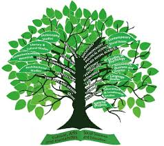 the research tree of knowledge rccesi ust