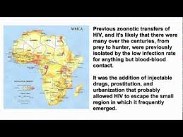 origin of hiv or where does hiv come from c0nc0rdance mirror