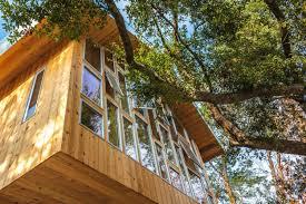 loc work the tree house