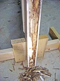 How To Replace Rotted Window Sill How To Repair A Rotted Door Bottom And Weatherstrip