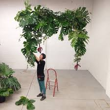 wedding arch leaves monstera install by leaf plants and flowers looseleaf
