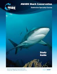 aware shark conservation study guide by project aware issuu