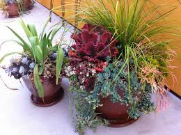 how to use pots in landscape design youtube