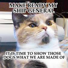 Internet Meme Cat - lenin cat know your meme