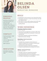 Networking Skills In Resume Pretentious Professional Resume 12 Top Professionals Templates
