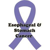 periwinkle ribbon stomach cancer or esophageal cancer ribbon by jewelsofhopebyjess
