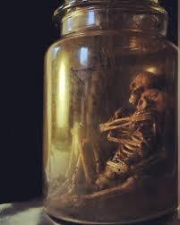 Vintage Halloween Skeleton Decorations by Best 25 Dollar Store Halloween Ideas On Pinterest Diy Halloween