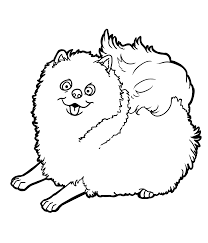 5 excellent pet coloring pages ngbasic com