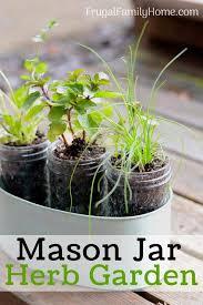 window herb harden diy windowsill herb garden simple garden gift frugal family home