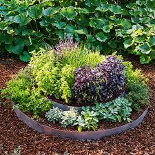 backyard with decorative herb garden layout herb garden