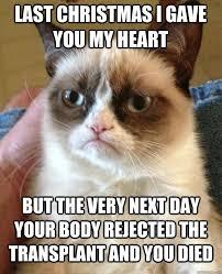 Last Christmas Meme - last christmas i gave you my heart cat meme cat planet cat planet