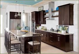 Espresso Shaker Kitchen Cabinets Brilliant 40 Kitchen Cabinets Espresso Inspiration Design Of