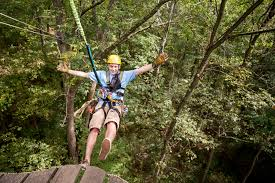 Backyard Zip Line Without Trees by Pricing Tree Frog Canopy Tours