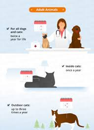 worming schedules for cats u0026 dogs canna pet