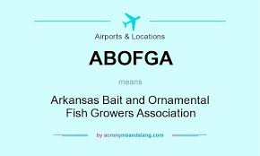 what does abofga definition of abofga abofga stands for