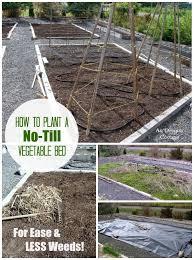 planting a garden bed the no till way u003d fewer weeds
