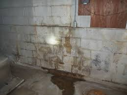 Basement Wall Waterproofing by Basement Waterproofing U0026 Foundation Repair B Dry