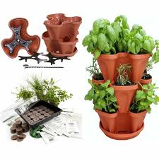 amazon com stackable planter medicinal herb garden starter kit