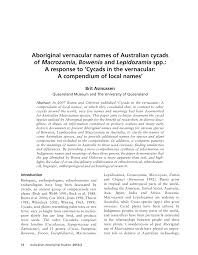 black bean aboriginal use of native plants asmussen b 2012 aboriginal names for australian cycads of