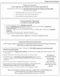 exles of professional summary for resume sle summary resume exles professional shalomhouse us