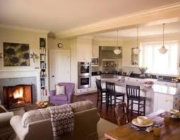 Vaulted Ceiling Kitchen Ideas Open Concept Kitchen Design 17 Open Concept Kitchen Living Room