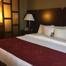 Comfort Suites Athens Georgia Comfort Suites 17 Photos U0026 15 Reviews Hotels 30490 Highway