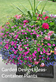 Container Gardening Ideas Garden Design Ideas Container Plants Todaysmama