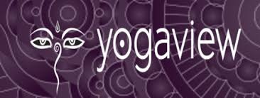 yogaview chicago read reviews and book classes on classpass