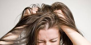 Dandruff And Hair Loss 7 Common Scalp Issues U2014 And How To Treat Them Scalp Health