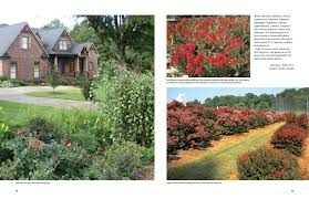 dirr s encyclopedia of trees and shrubs michael a dirr