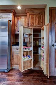 Best Paint For Cabinet Doors Kitchen Cabinets Painting Stained Cabinets Best Paint For