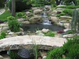 Mini Water Garden Ideas Terraced Small Water Garden Ideas Showing Small Creek And River
