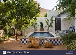 plunge pool with striped seating area in shade of fruit trees