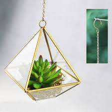 mini geometric glass vase succulent terrarium kit by dingading
